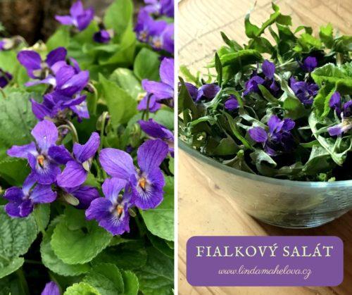 Salát s fialkou