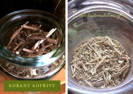 Rozdrcené kořeny kopřivy