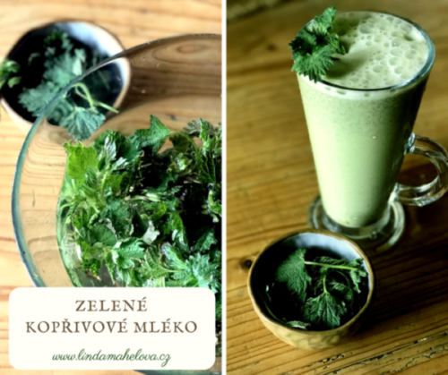 Zelené kopřivové mléko